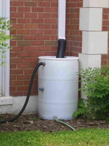 Rain Barrels featured image