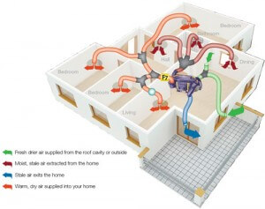 Improve Your Home's Ventilation Today! featured image